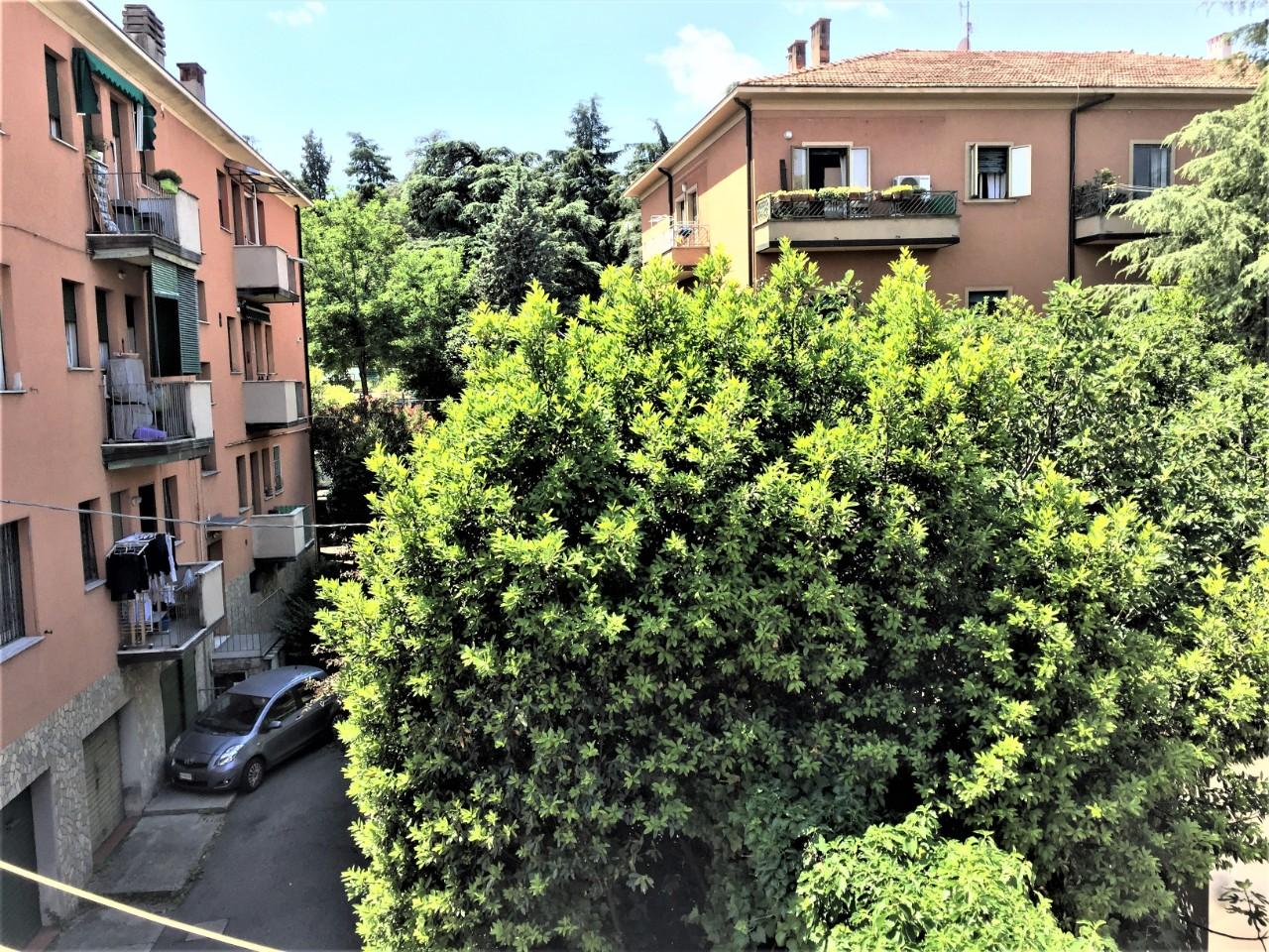 Foto - appartamento Colli Murri