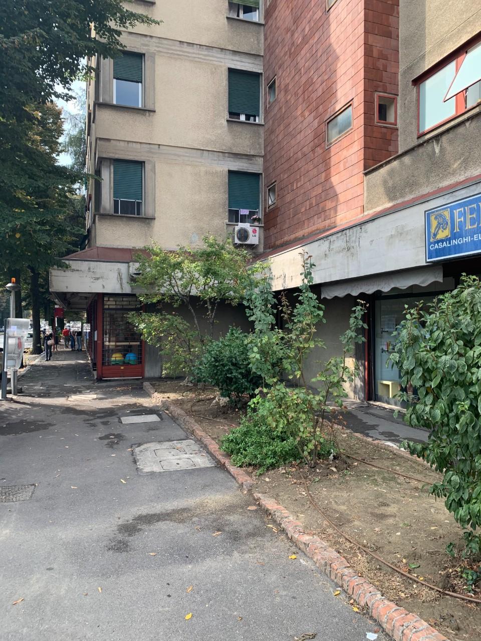 negozio Arno