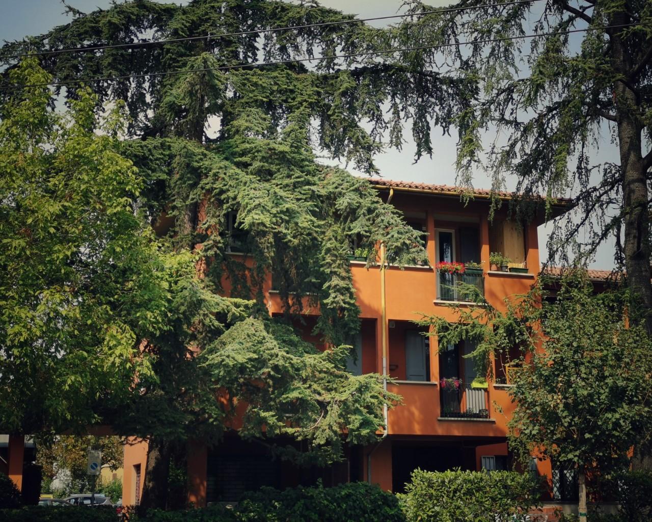 vendita appartamento bolognaMazzini
