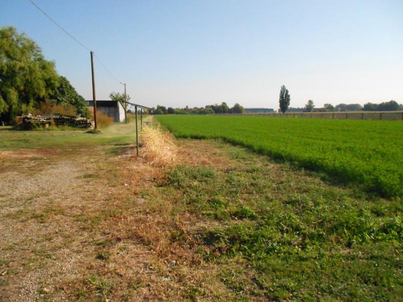 Vendita - Terreno agricolo - Borgo Panigale - Bologna - € 650.000