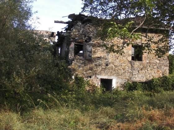 Foto 1 di Rustico / Casale Albinea, Albinea
