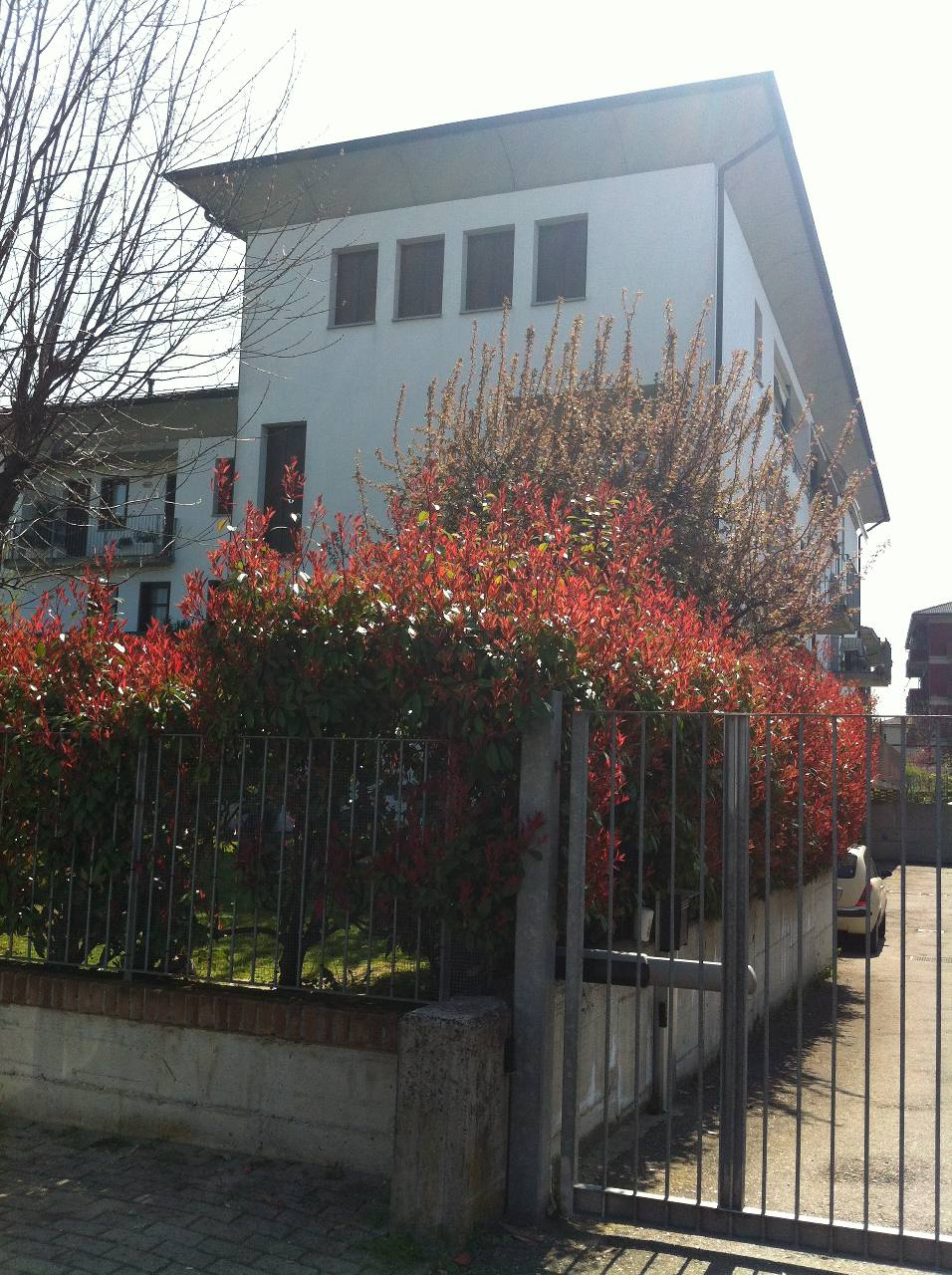 Appartamento in affitto Montechiarugolo