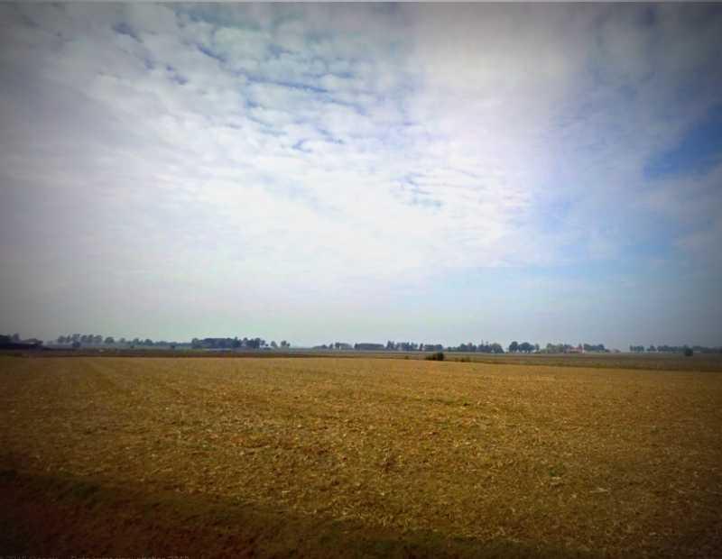 Terreno Agricolo in vendita a Bondeno, 9999 locali, zona Località: Bondeno, prezzo € 5.720.000 | Cambio Casa.it