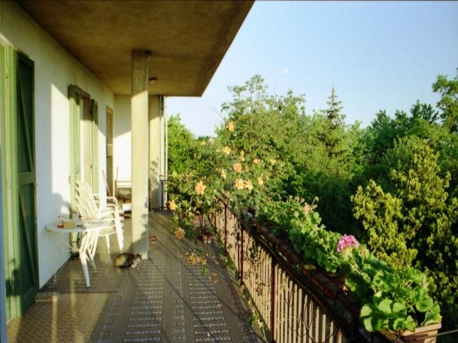 Villa Indip. in vendita Quattro Castella