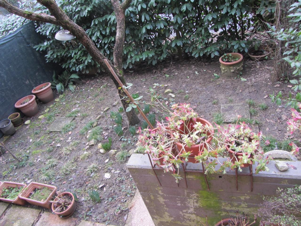 Villetta  in vendita Albinea