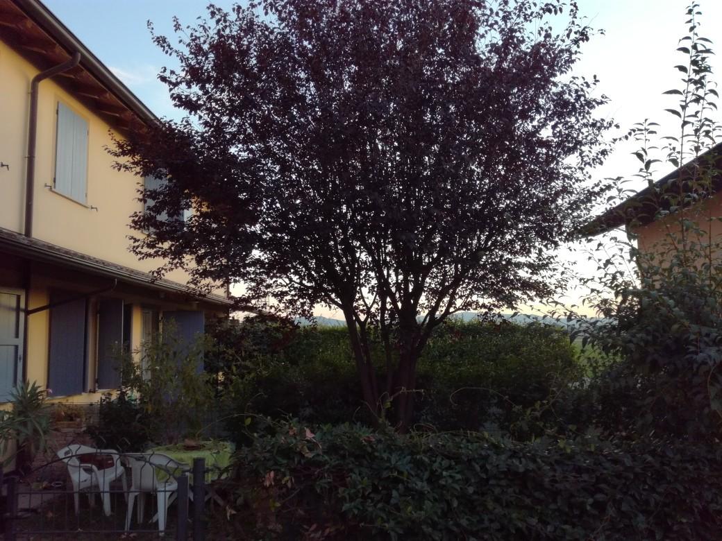 Appartamento in vendita Reggio Emilia Zona Gavasseto