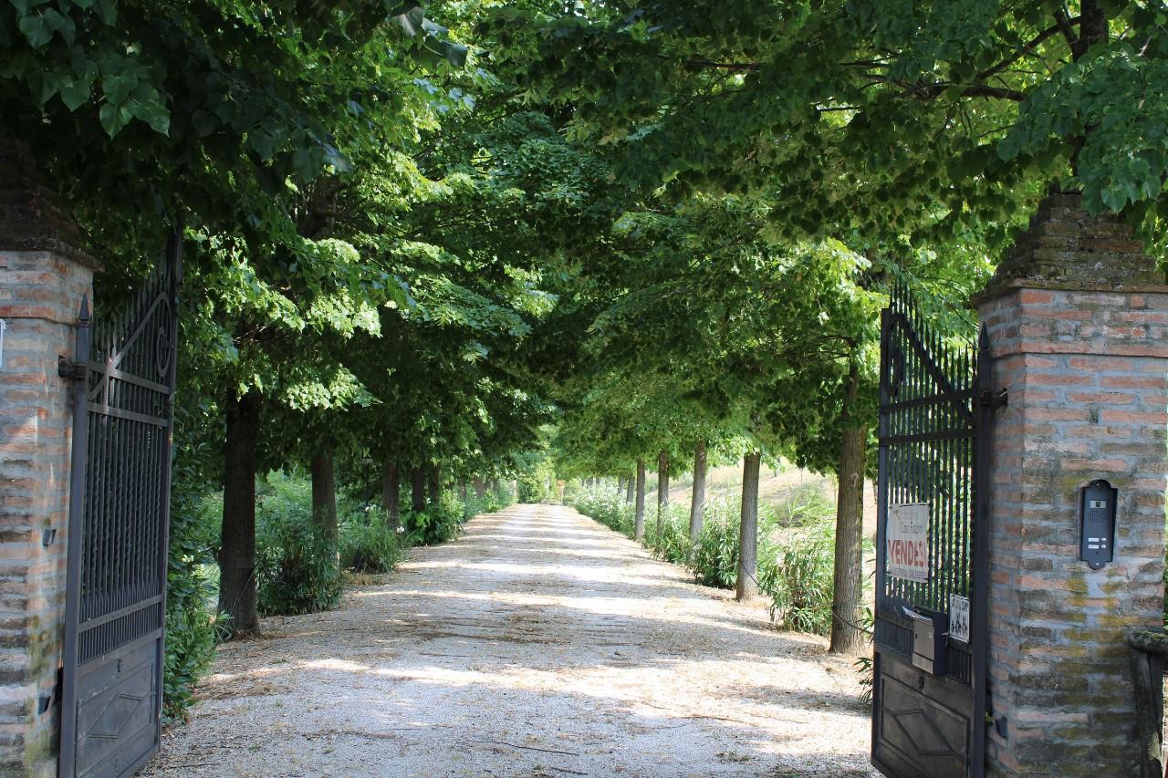 Villa Indipendente in vendita Castel San Pietro