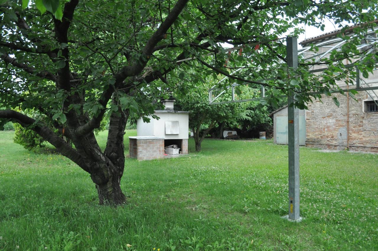 Podere (casa + Terreno) in vendita Ravenna Madonna dell Albero