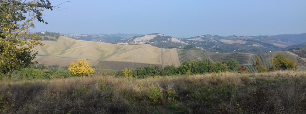 Terreno Agricolo in vendita Monte San Pietro