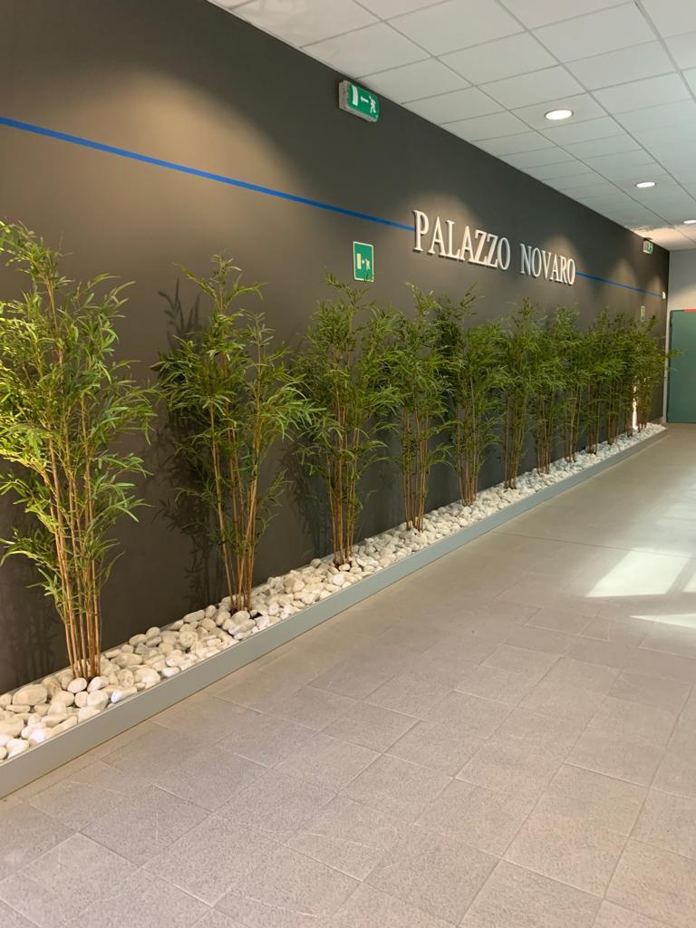 Ufficio in affitto Parma Zona Viale Mentana
